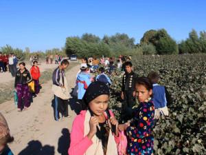 uzbek-child-labor-cotton