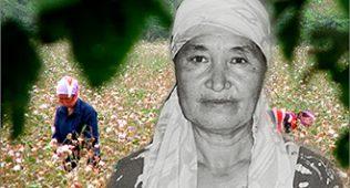 Сурат икромов хотиралари: хоразмлик фермерларнинг ҳокимга пора бермасликка аҳд қилишгани