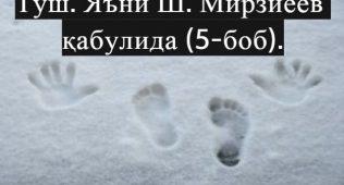 Туш. яъни ш.мирзиёев қабулида (5-боб).