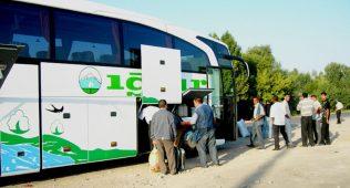 Тошкент-чимкент автобуси йӯлга қӯйилажак