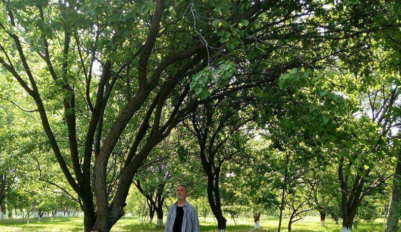 Эврил Турон: Мустақиллик қаҳрамони (давоми)