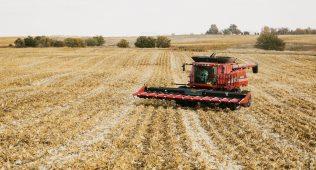 Фермер хўжалигининг ерини ҳоким олиб қўйишга ҳақлими?