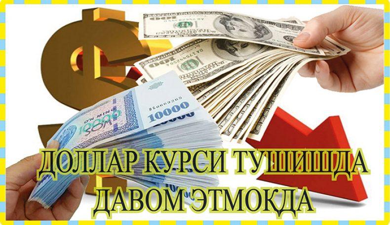Ўзбекистонда доллар курси тушишда давом этмоқда