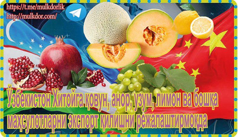 Ўзбекистон Хитойга қовун, анор, узум, лимон ва бошқа маҳсулотларни экспорт қилишни режалаштирмоқда