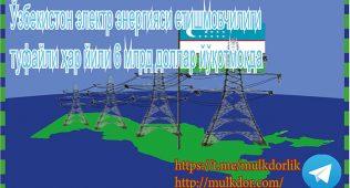 Ўзбекистон электр энергияси етишмовчилиги туфайли ҳар йили 6 млрд доллар йўқотмоқда
