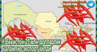 Ўзбекистон 25 млн долларлик қалампир экспорт қилди