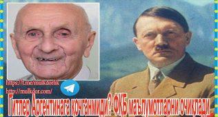 Гитлер аргентинага қочганмиди? фқб маълумотларни очиқлади