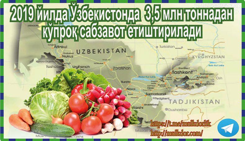 2019 йилдаЎзбекистонда 3,5 млн тоннадан кўпроқ сабзавот етиштирилади