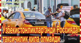 Ўзбекистонликлар энди россияда таксичилик қила олмайди