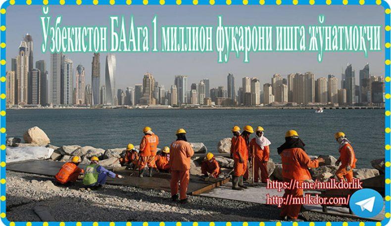 Ўзбекистон БААга 1 миллион фуқарони ишга жўнатмоқчи