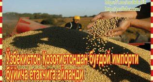 Ўзбекистон қозоғистондан буғдой импорти бўйича етакчига айланди