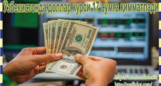 Ўзбекистонда доллар курси 17 сўмга қимматлади