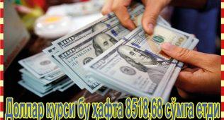Доллар курси бу ҳафта 8518,68 сўмга етди