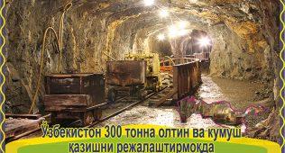 Ўзбекистон 300 тонна олтин ва кумуш қазишни режалаштирмоқда