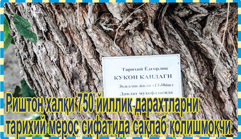 Риштон халқи 750 йиллик дарахтларни тарихий мерос сифатида сақлаб қолишмоқчи