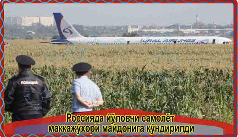 Россияда йўловчи самолёт маккажўхори майдонига қўндирилди