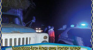 Қоровулбозор-когон йўлида қамиш ўғрилари ушланди